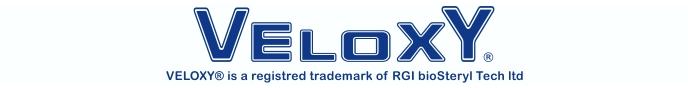 Logo Veloxy ENG